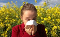 Do I have hay fever? Your hay fever diagnosis